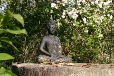 mediteren als een boeddha