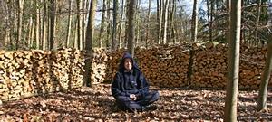 bos meditatie